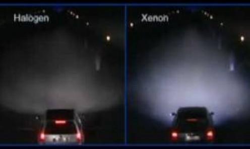 Xenon vs. Halogen